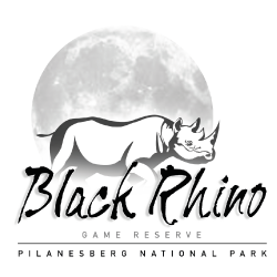 2016-blackrhino-brand