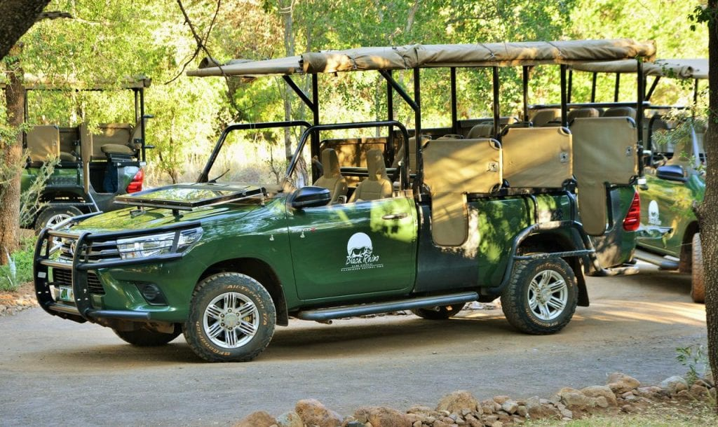 Big Cat Safaris - Black Rhino Game Lodge