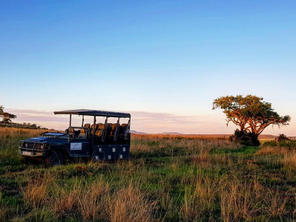 Big Cat Safaris - Nambiti Plains