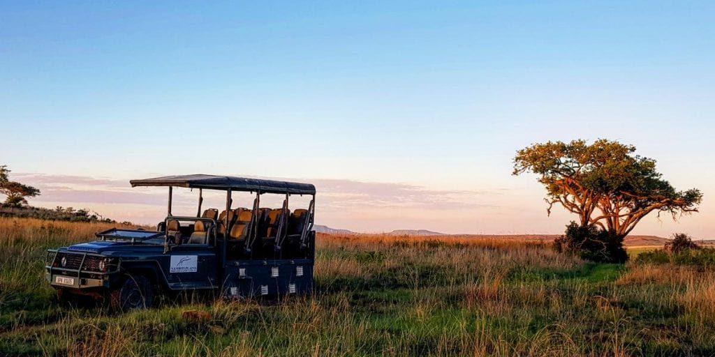 Big Cat Safaris - Nambiti Plains