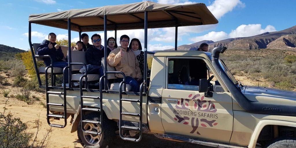 Big Cat Safaris - Rooiberg Safaris